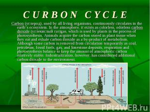 Carbon (углерод), used by all living organisms, continuously circulates in the e