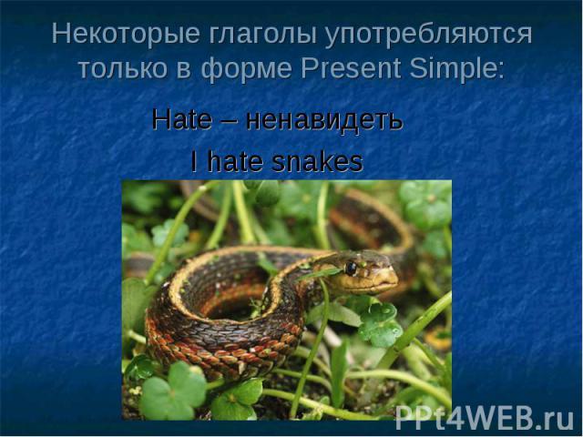 Некоторые глаголы употребляются только в форме Present Simple: Hate – ненавидеть I hate snakes