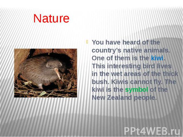 Nature You have heard of the country's native animals. One of them is the kiwi. This interesting bird lives in the wet areas of the thick bush. Kiwis cannot fly. The kiwi is the symbol of the New Zealand people.