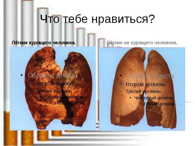 Что тебе нравиться? Лёгкие курящего человека.