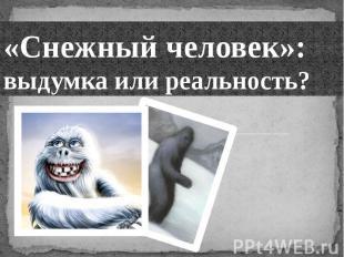 «Снежный человек»: выдумка или реальность?