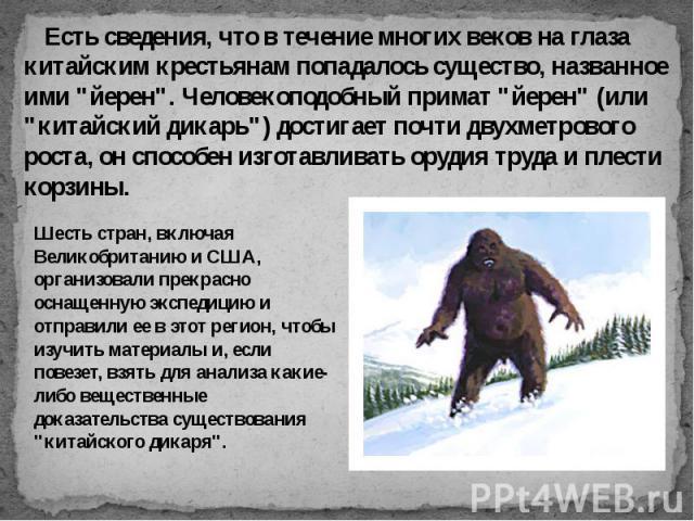 """Есть сведения, что в течение многих веков на глаза китайским крестьянам попадалось существо, названное ими """"йерен"""". Человекоподобный примат """"йерен"""" (или """"китайский дикарь"""") достигает почти двухметрового роста, он способ…"""