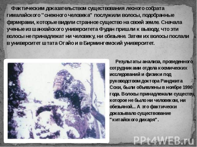 """Фактическим доказательством существования лесного собрата гималайского """"снежного человека"""" послужили волосы, подобранные фермерами, которые видели странное существо на своей земле. Сначала ученые из шанхайского университета Фудан пришли к …"""