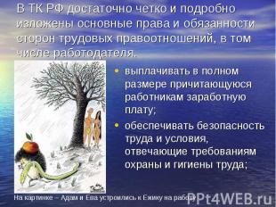 В ТК РФ достаточно четко и подробно изложены основные права и обязанности сторон