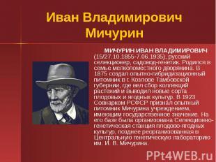 Иван Владимирович Мичурин МИЧУРИН ИВАН ВЛАДИМИРОВИЧ (15/27.10.1855-7.06.1935), р