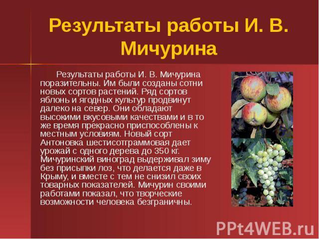 Результаты работы И. В. Мичурина Результаты работы И. В. Мичурина поразительны. Им были созданы сотни новых сортов растений. Ряд сортов яблонь и ягодных культур продвинут далеко на север. Они обладают высокими вкусовыми качествами и в то же время пр…
