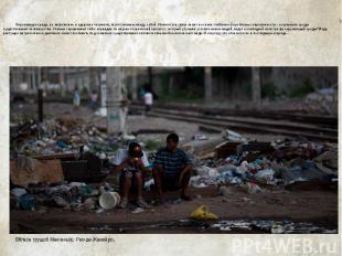 Проблема мусора и отходов. Окружающая среда, ее загрязнение и здоровье человека,