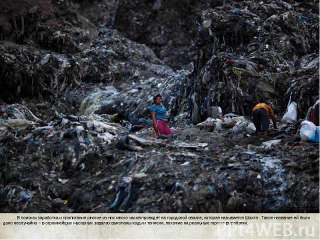 В поисках заработка и пропитания многие из них много часов проводят на городской свалке, которая называется Шахта . Такое название ей было дано неслучайно – в огромнейших мусорных завалах выкопаны ходы и тоннели, похожие на реальные горные выработки…