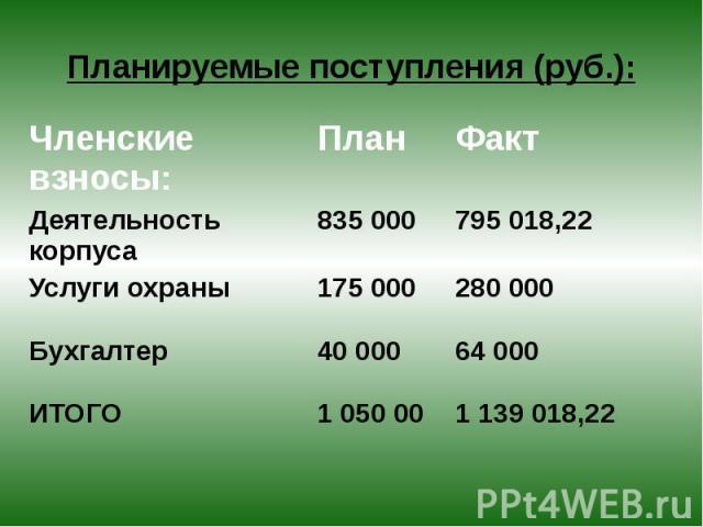 Планируемые поступления (руб.):