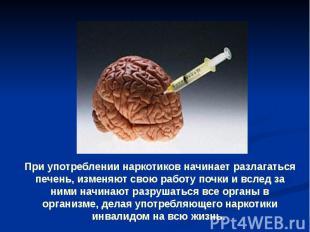 При употреблении наркотиков начинает разлагаться печень, изменяют свою работу по
