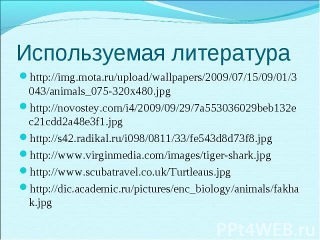 http://img.mota.ru/upload/wallpapers/2009/07/15/09/01/3043/animals_075-320x480.jpg http://img.mota.ru/upload/wallpapers/2009/07/15/09/01/3043/animals_075-320x480.jpg http://novostey.com/i4/2009/09/29/7a553036029beb132ec21cdd2a48e3f1.jpg http://s42.r…