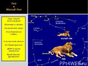 Лев и Малый Лев Царь зверей золотогривый Величаво и лениво На эклиптике лежит И