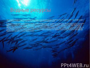 Водные ресурсы Россия омывается водами 12 морей, принадлежащих трем океанам, а т