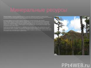 Минеральные ресурсы Полезные ископаемые - минеральные образования земной коры, к