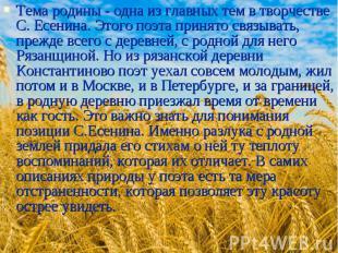 Тема родины - одна из главных тем в творчестве С. Есенина. Этого поэта принято с