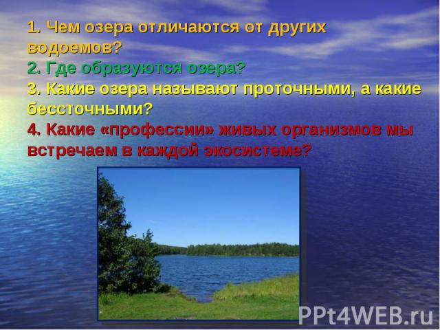 1. Чем озера отличаются от других водоемов?2. Где образуются озера?3. Какие озера называют проточными, а какие бессточными?4. Какие «профессии» живых организмов мы встречаем в каждой экосистеме?