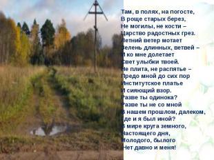 Там, в полях, на погосте, В роще старых берез, Не могилы, не кости – Царство рад