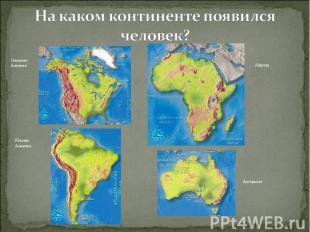 На каком континенте появился человек?