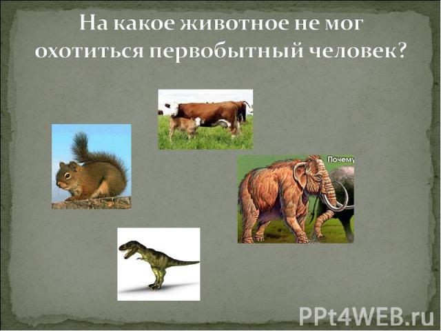 На какое животное не мог охотиться первобытный человек?