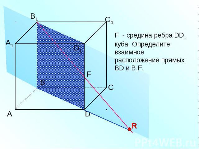 F - средина ребра DD1 куба. Определите взаимное расположение прямых BD и B1F.