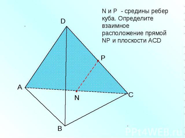 N и Р - средины ребер куба. Определите взаимное расположение прямой NР и плоскости АСD