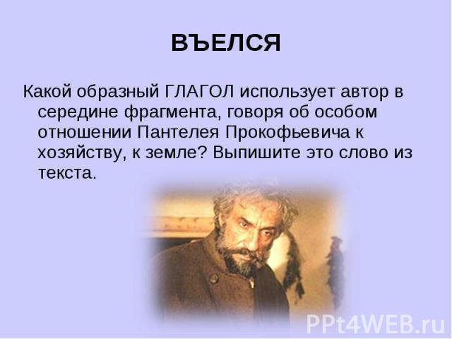 ВЪЕЛСЯКакой образный ГЛАГОЛ использует автор в середине фрагмента, говоря об особом отношении Пантелея Прокофьевича к хозяйству, к земле? Выпишите это слово из текста.