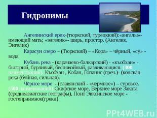 Гидронимы Ангелинский ерик-(тюркский, турецккий):«ангалы»- имеющий мать; «энгели