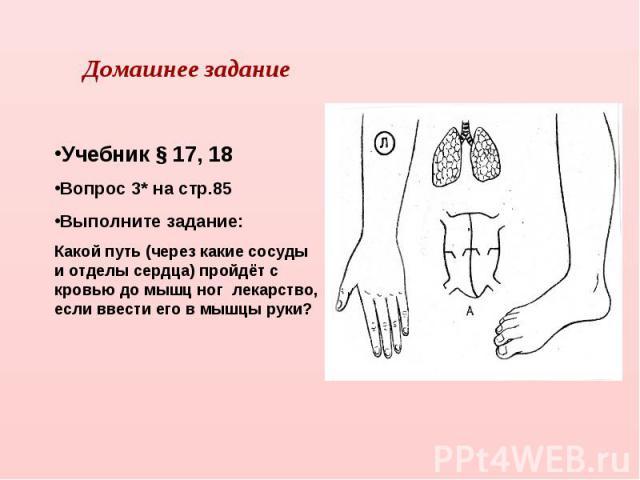 Домашнее заданиеУчебник § 17, 18Вопрос 3* на стр.85Выполните задание:Какой путь (через какие сосуды и отделы сердца) пройдёт с кровью до мышц ног лекарство, если ввести его в мышцы руки?