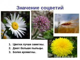 Значение соцветийЦветки лучше заметны.Дают больше пыльцы.Более ароматны.