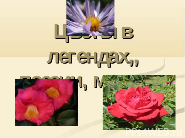 Цветы в легендах,, поэзии, музыке