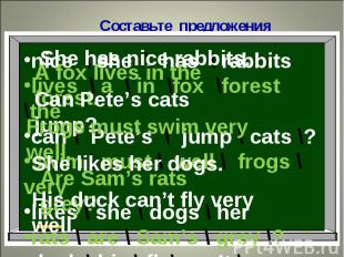 Составьте предложенияShe has nice rabbits.A fox lives in the forest.Can Pete's c