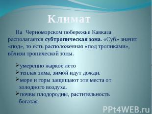 КлиматНа Черноморском побережье Кавказа располагается субтропическая зона. «Суб»