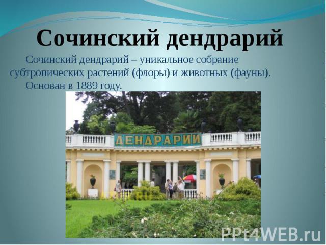 Сочинский дендрарийСочинский дендрарий – уникальное собрание субтропических растений (флоры) и животных (фауны). Основан в 1889 году.
