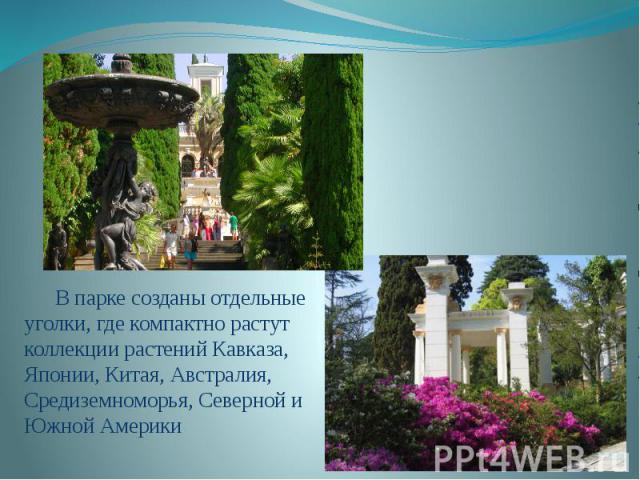 В парке созданы отдельные уголки, где компактно растут коллекции растений Кавказа, Японии, Китая, Австралия, Средиземноморья, Северной и Южной Америки