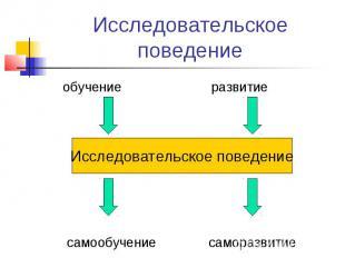 Исследовательское поведениеИсследовательское поведение