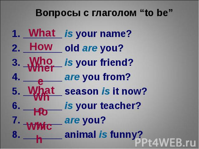 "Вопросы с глаголом ""to be""_______ is your name?_______ old are you?_______ is your friend?_______ are you from?_______ season is it now?_______ is your teacher?_______ are you?_______ animal is funny?"