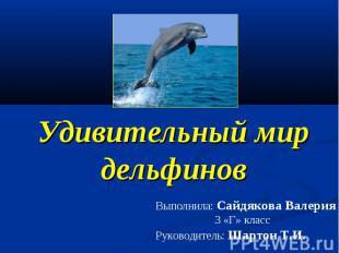Удивительный мир дельфинов Выполнила: Сайдякова Валерия 3 «Г» класс Руководитель