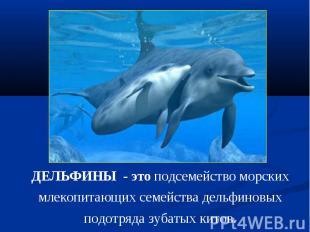 ДЕЛЬФИНЫ - это подсемейство морских млекопитающих семейства дельфиновых подотряд