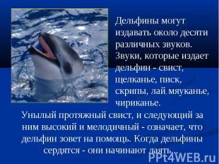 Дельфинымогут издавать около десяти различных звуков. Звуки, которые издает дел