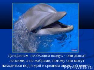 Дельфинам необходим воздух - они дышат легкими, а не жабрами, потому они могут н