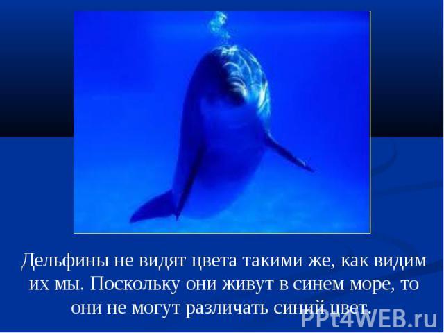 Дельфины не видят цвета такими же, как видим их мы. Поскольку они живут в синем море, то они не могут различать синий цвет.