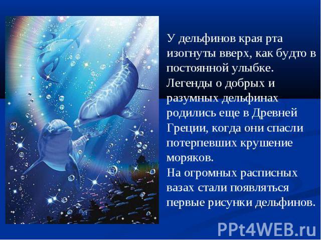 У дельфинов края рта изогнуты вверх, как будто в постоянной улыбке. Легенды о добрых и разумных дельфинах родились еще в Древней Греции, когда они спасли потерпевших крушение моряков.На огромных расписных вазах стали появляться первые рисунки дельфинов.