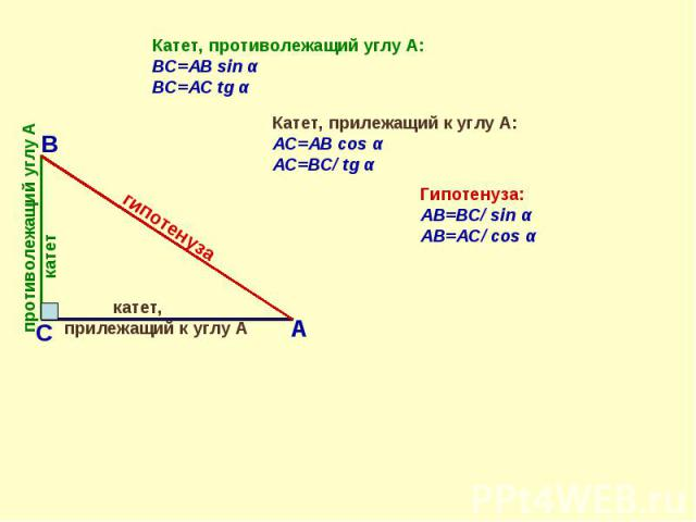 Катет, противолежащий углу А: BС=AB sin αBС=AC tg α Катет, прилежащий к углу А:AC=AB cos α AC=BС/ tg αГипотенуза:AВ=BС/ sin αAВ=АС/ cos α