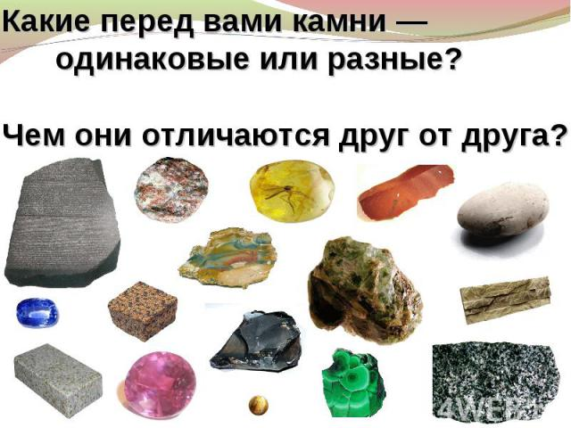 Какие перед вами камни— одинаковые или разные? Чем они отличаются друг отдруга?