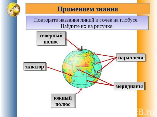 Применяем знанияПовторите названия линий и точек на глобусе. Найдите их на рисунке.