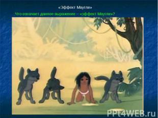 «Эффект Маугли»Что означает данное выражение – «эффект Маугли»?