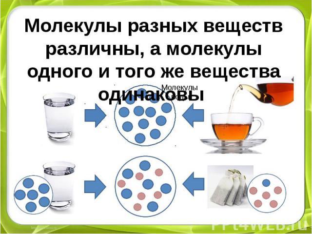 Молекулы разных веществ различны, а молекулы одного и того же вещества одинаковы