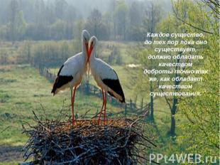 Каждое существо, до тех пор пока оно существует, должно обладать качеством добро