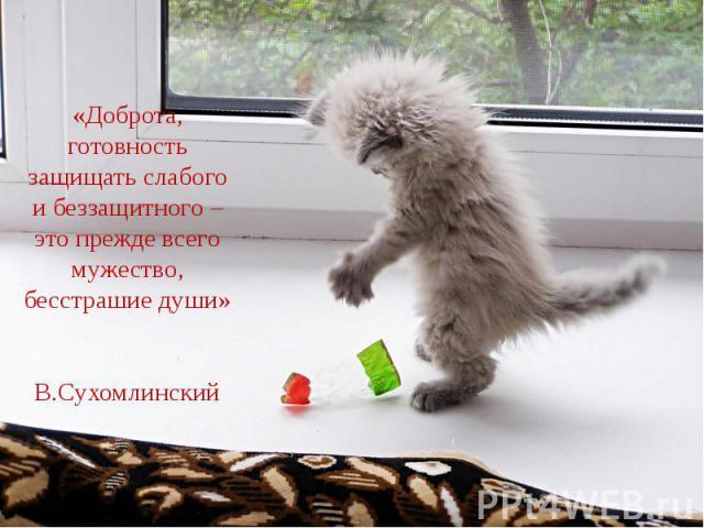 «Доброта, готовность защищать слабого и беззащитного – это прежде всего мужество, бесстрашие души»В.Сухомлинский