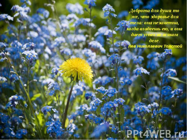Доброта для души то же, что здоровье для тела: она незаметна, когда владеешь ею, и она дает успех во всяком деле. Лев Николаевич Толстой